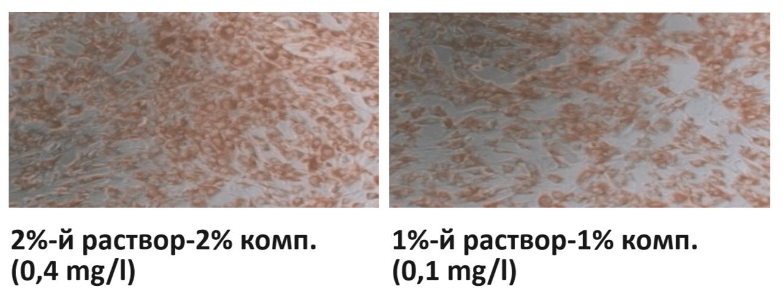 Ekletmarin-test-na-effektivnost-5